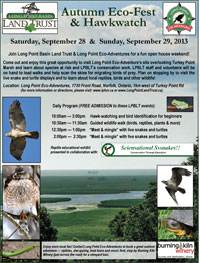 EcoFest and Hawk Watch